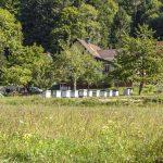 MJC de Sewen - Le village de Sewen
